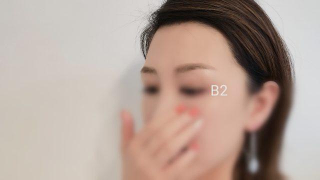 眉毛テンプレートB2